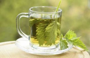 6 Health Benefits of Nettle Tea