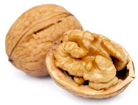 A diet rich in fatty acids