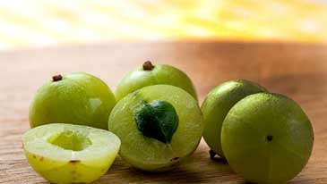 Amla has Many Health Benefits on our Body