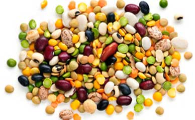 Beans help in consuming extra calories while eating