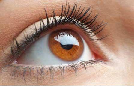 Boosts Your Eye Health