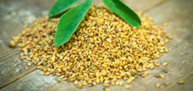 Fenugreek seeds regulates the bowel movements