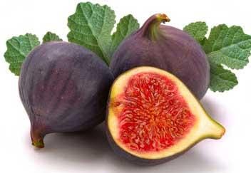 Figs Remedy