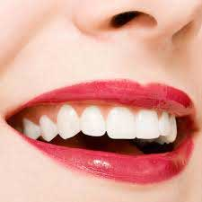 Foods to keep your gums Healthy and Teeth Strong