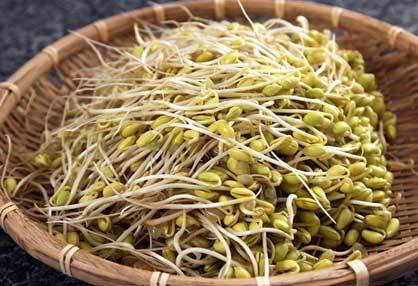 Sprouts are rich source of proteins and fiber