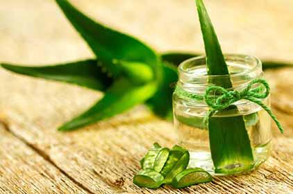 Aloe Vera gel reduce pregnancy stretch mark