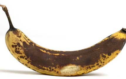 Over-ripped banana