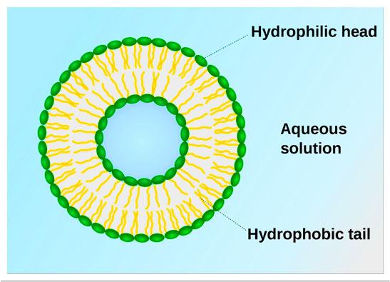 Biocompatible