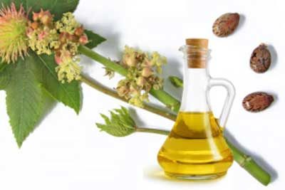 Castor oil has medicinal properties that treats lip infections