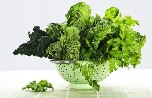 Darkish Leafy Green Vegetables