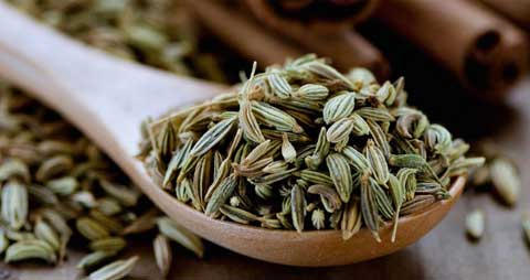 Fennel seed promotes menstruation