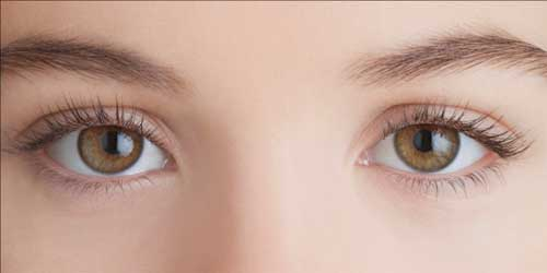 Moringa Seeds are Very Good for Eyes