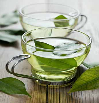 Green tea fights off with the free radicals