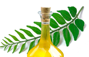 Curry leaves for hair care