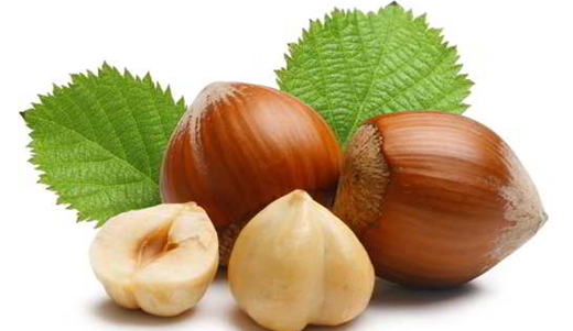 Hazelnuts - Reduce Unwanted Fat from Your Body