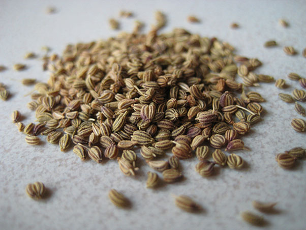 Health Benefits of Carom Seeds