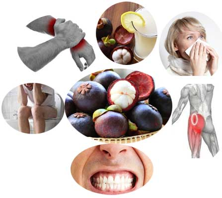 Health Benefits of Mangosteen