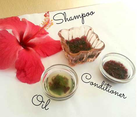 Hibiscus Tips to Make your Hair Grow Faster