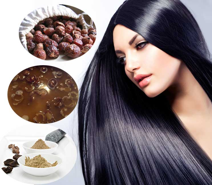 How to wash Scalp and Hair Using Soap Nuts / Kunkudukai / Reetha