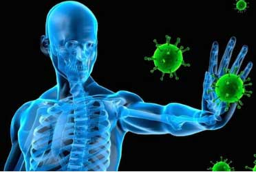 Benefits Of Tamarind Seeds For Immunity