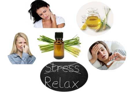 Benefits of Lemongrass Essential Oil