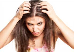 Neem leaves cures the problem of dandruff