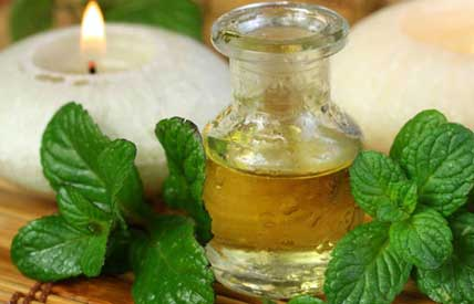 peppermint to get rid of migraine