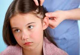 Sesame oil for Hair Removes Head Lice