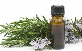 Tea tree oil tip to treat piles