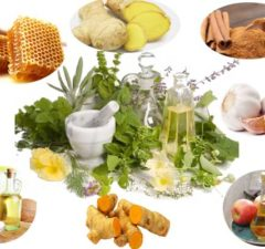 Top Natural Antibiotics Should Include in Diet