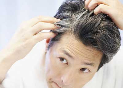 Sesame oil treats Premature Graying