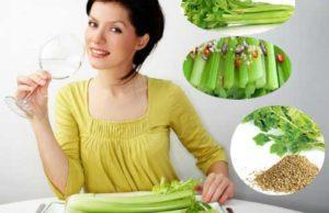 14 Amazing Health Benefits of Celery