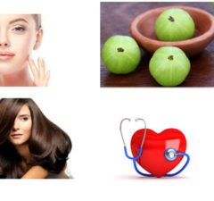 Benefits of Amlaor Indian Gooseberry