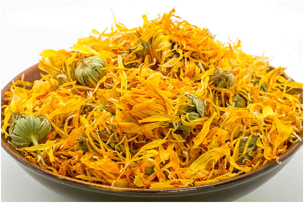 Calendula to Get Reduce For Hand, Foot And Mouth Disease