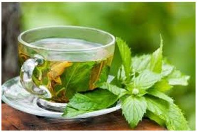 Green tea and Mint drink