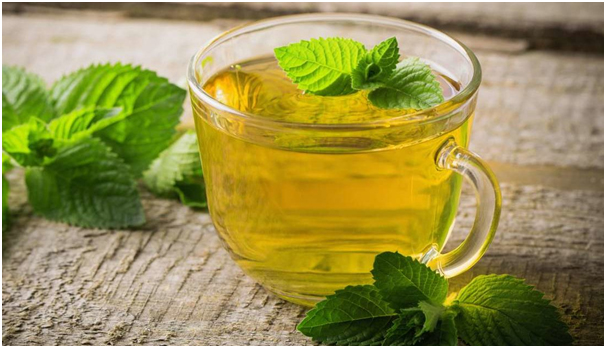 Peppermint As Natural Expectorant