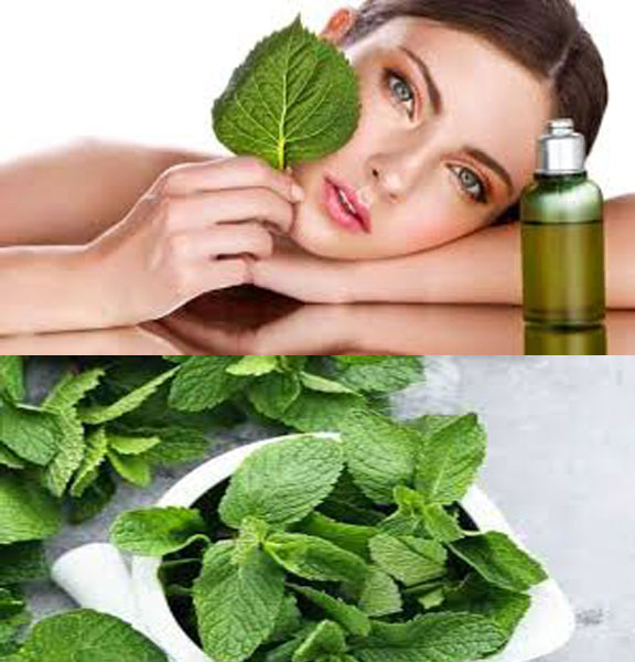 Beauty Benefits Of Mint For Skin