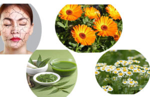 Magical Ayurvedic Treatments For Dry Skin