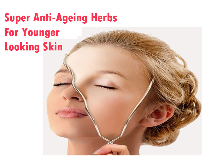 Super Anti-Ageing Herbs For Younger-Looking Skin