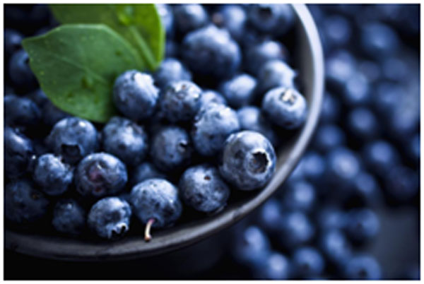 Blueberries For Kidneys Healthy