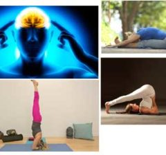 Powerful Yoga Asanas Will Boost Your Brain