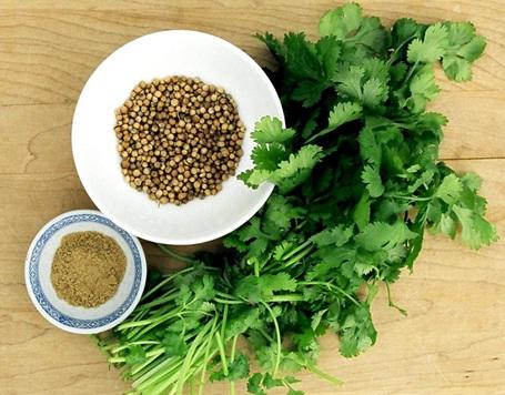 Amazing Health Benefits of Coriander
