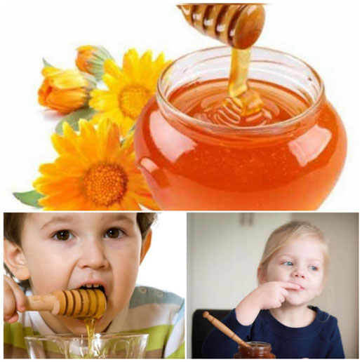 Honey and Ginger - most effective home remedies for cold & cough in kids