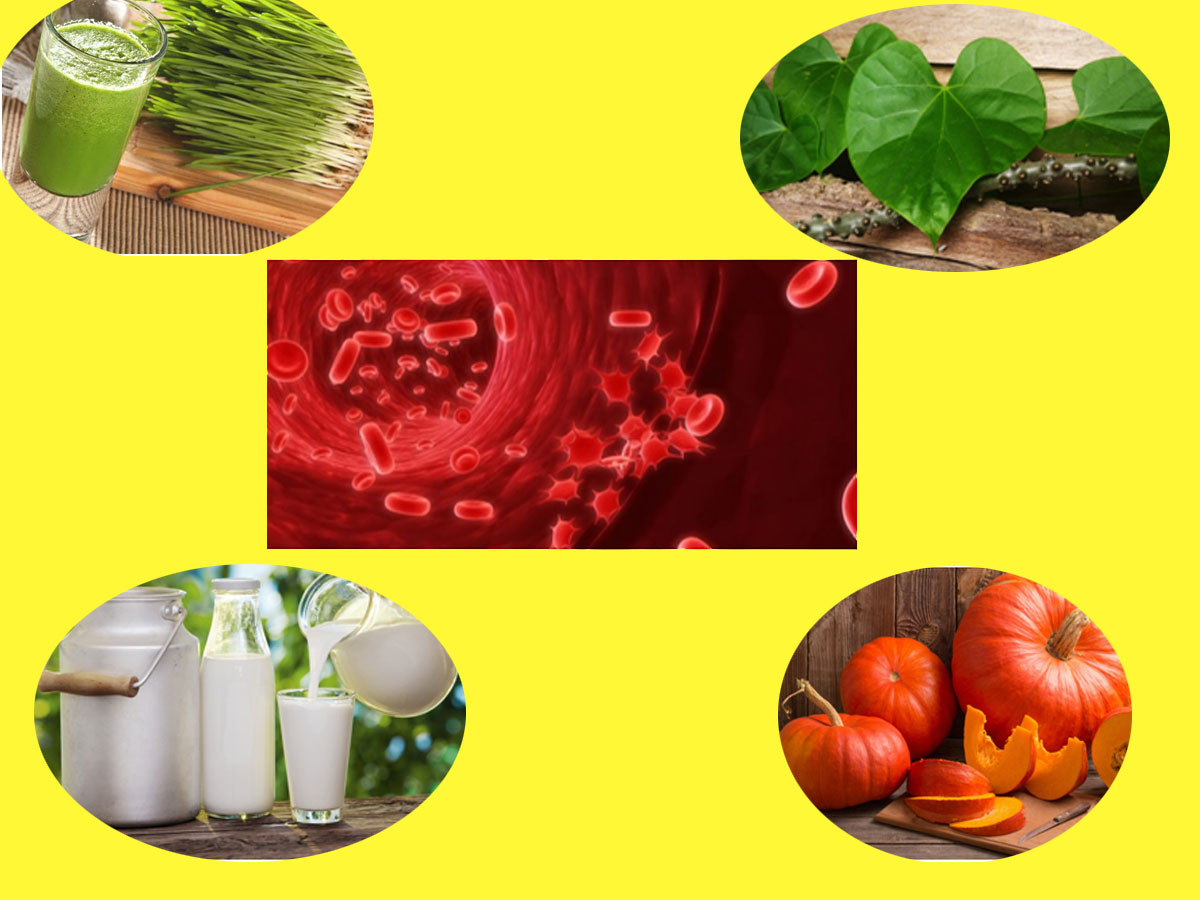 This Is How You Can Increase Your Platelets Naturally