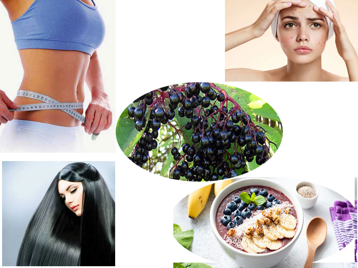 Incredible & Numerous Health Benefits Of Acai Berry