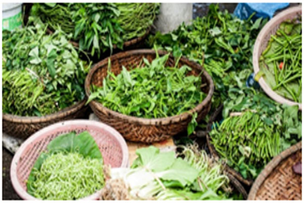 Leafy vegetables are rich in fiber