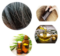 Natural Home Remedies For Lice