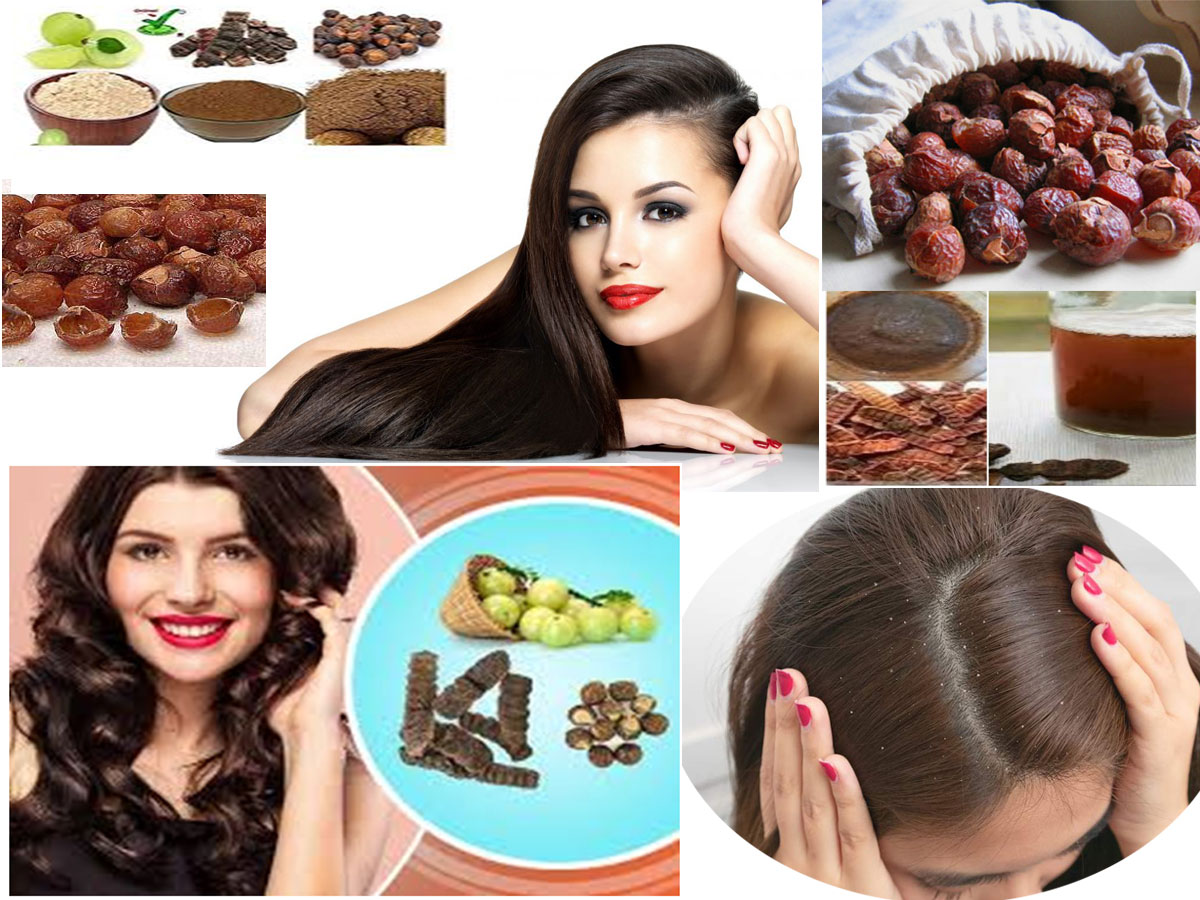 Make Natural Hair Mask/Hair Pack With Reetha (Soap Nut), Amla(Goose Berry) and Sikakayi(Acacia Concinna)