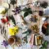 Natural Dyes- Its importance, Properties, Seven Natural dye yielding plants