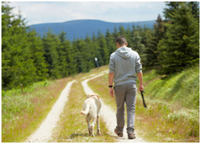 A regular walk with your pet is a good exercise